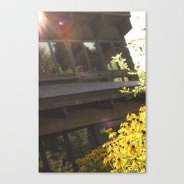 Susan Canvas Print