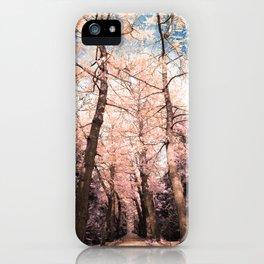 Ginkgo biloba trees iPhone Case