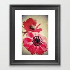 Sweet Anemone II  Framed Art Print