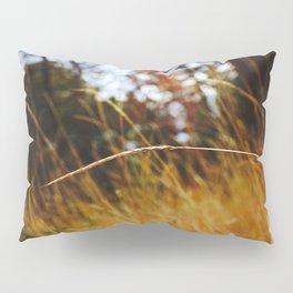Stranded. Pillow Sham