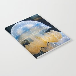 Double Blue Jellyfish - Underwater Photography Notebook