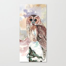 """""""No post on sundays"""" - Owl in the snow Canvas Print"""