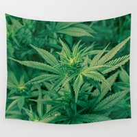 marijuana Wall Tapestries featuring Marijuana Plants  by Limitless Design