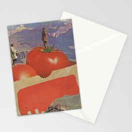 a woman's place Stationery Cards