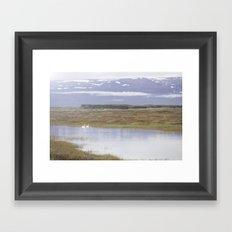 Swans of Iceland Framed Art Print