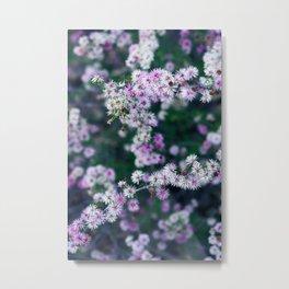 Pink Texas Wildflowers Metal Print