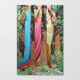 Forest Fairies Canvas Print