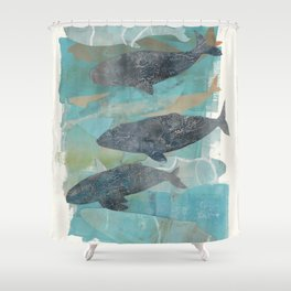 The pod Shower Curtain