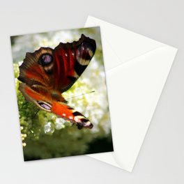 Peacock Butterfly on White Buddleja Stationery Cards