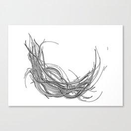 Cables XXXVIII Canvas Print