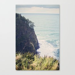 Cliff Side Beauty  Canvas Print