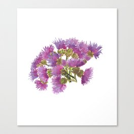 Milk Thistle Boquet Canvas Print