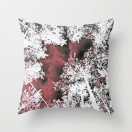 #42 Throw Pillow