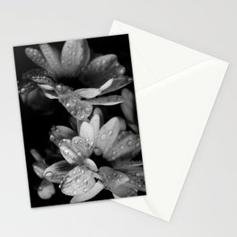Flower and drops. Black and white. Stationery Cards