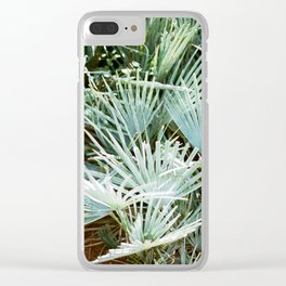 "Travel photography ""Morocco green"" 
