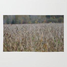 Fall Harvest Rug