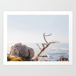 Zen Coast - California Photography Art Print