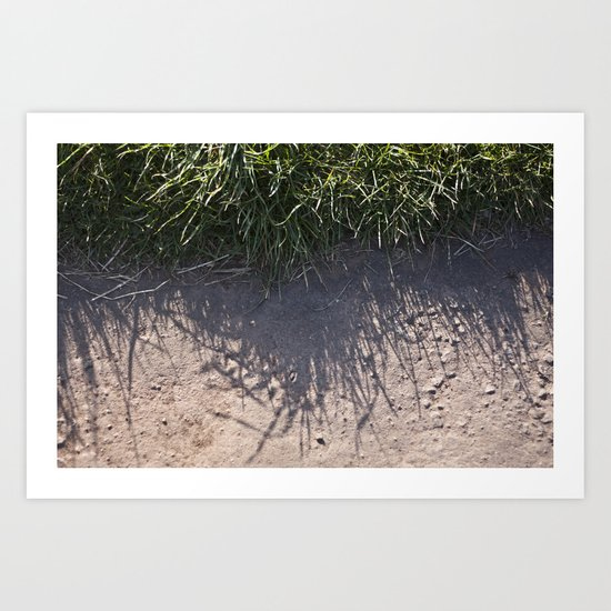 The Grass and it's Shadow Art Print