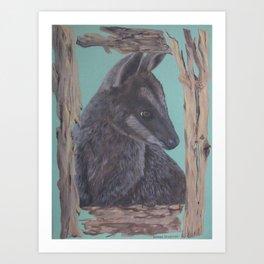 Pretty Faced Wallaby Art Print