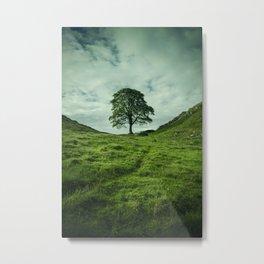 Sycamore Gap Hadrian's Wall Metal Print