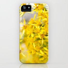 Sunshine & Flowers iPhone Case