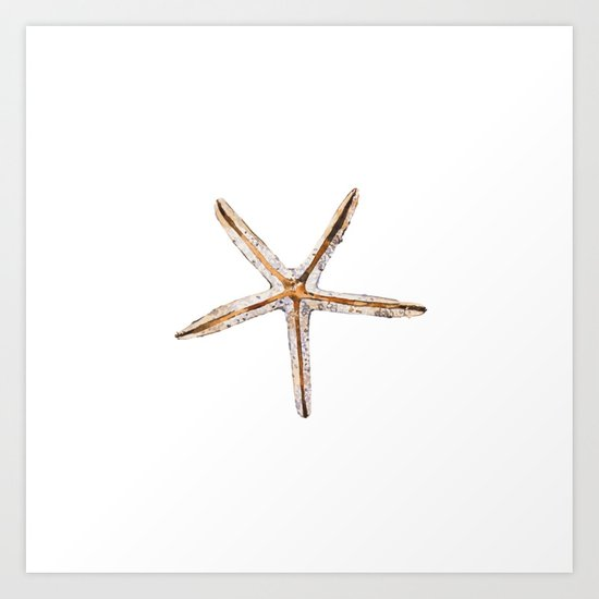 Blonde starfish by hamptonstyledesign