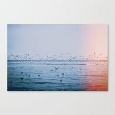 Ocean Birds Canvas Print