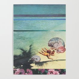 Sea Collections Poster