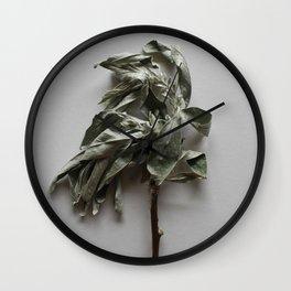 Olea twig herbal wall art Wall Clock