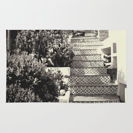 Black and white stairs Rug