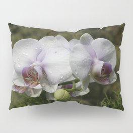 Water droplets on Orchids Pillow Sham