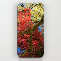 Fall Colors at Crescent Lake Lodge, 2 iPhone & iPod Skin