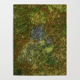 Old stone wall with moss Poster