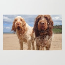 Italian Spinoni - Dogs on a Rock Rug