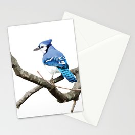 Blue Jay in Branches Stationery Cards