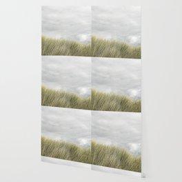 Beach grass and clouds Wallpaper