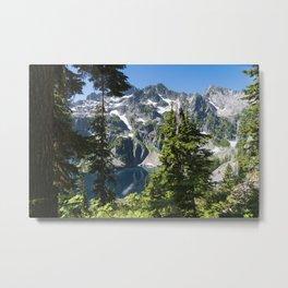 Into Nature Metal Print