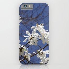 Star filled sky (Star Magnolia flowers!)      Edit iPhone Case