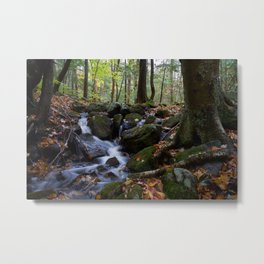 Autumn Forest Stream IV Metal Print