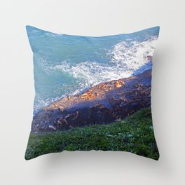 Sea Lion Caves Throw Pillow