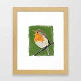 Robin 02 Framed Art Print