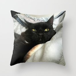 THE CAT WITH NO NAME M* Throw Pillow
