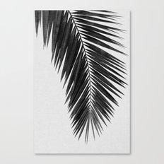 Palm Leaf Black & White I Canvas Print