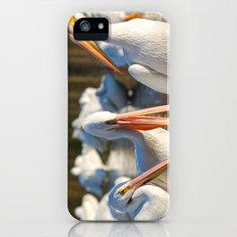 Three Birds Walk Into A Bar iPhone Case