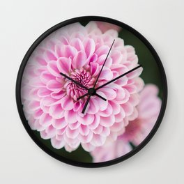 Mums in Pink Wall Clock