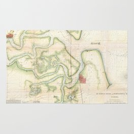 Vintage Map of The St Marys River - FL/GA (1857) Rug