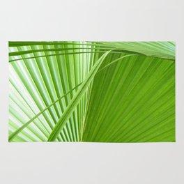Palm Leaves // Tropical Wall Art, Beach Cottage Decor, Coastal Art Rug