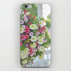 Hint of Summer iPhone & iPod Skin