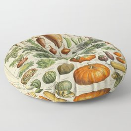 VEGETABLES Legumes Et Plantes Potageres Vintage Scientific Illustration French Language Encyclopedia Floor Pillow