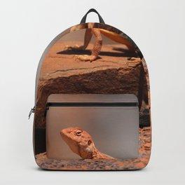 Karijini Lizard Backpack